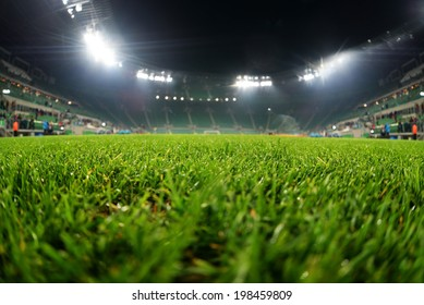 stadium, close up on grass