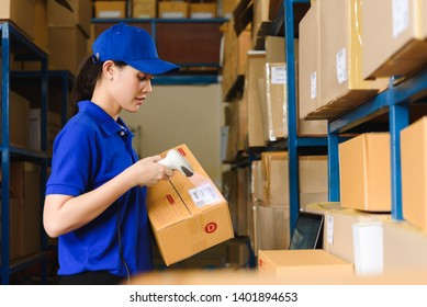Staff work in warehouse use bar code scanner and laptop with program interface of logistic management