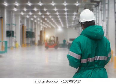 Staff worker control transporting goods in loading of the freezing warehouse. Storage for Ready-made foods or Ready-to-Eat Foods. Export-Import Logistics system concept.