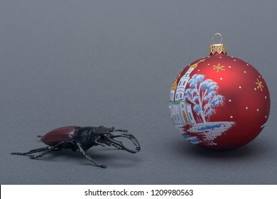 a stag beetle and new year's eve ball