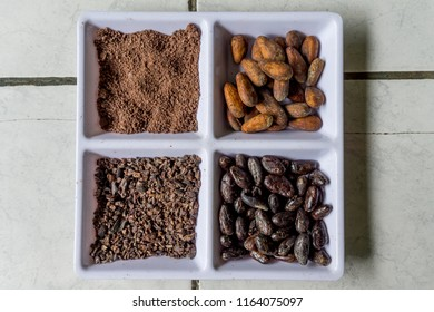 Stages of Chocolate
