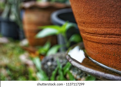 Stagnant water in a flowerpot saucer.Clean water is a place of spawn of mosquito.