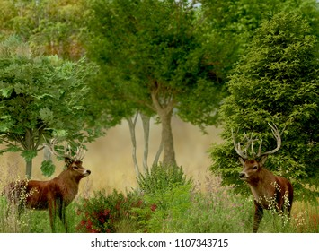 stags with trees