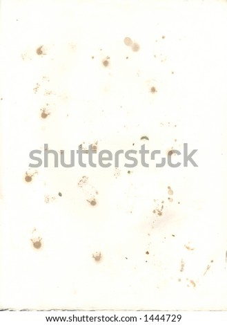 Stained blotting paper old press used stock photo edit now 1444729 stained blotting paper from an old press used to make pressed flowers staining comes from mightylinksfo