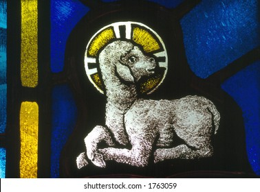 Stained Glass: Lamb