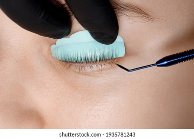 Staining, curling, laminating, lash lift. Rollers, hair curlers for eyelashes. Eyelash Extension Procedure. Lengthening lashes for girl in beauty salon. Beauty Concept.