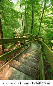Staircase leading down a deep canyon in Shades State Park in Indiana