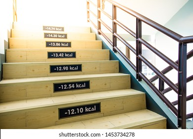 Staircase in the library amount of kcal in the walk exercise. Fun way to measure weight loss by using these stairs kcal to go upstairs this is choose for diet and fitness. Stair idea calories.