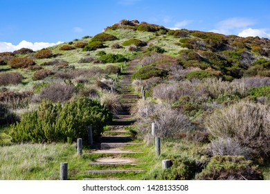The stairs along the Hallett Cove boardwalk around the Sugarloaf rock formation in South Australia on 19th June 2019