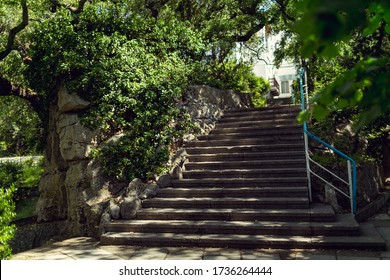 Stairs with concrete steps and a blue railing to the top in a Park among lush vegetation in the shade of green trees and bushes on a bright Sunny day. Direct perspective. Russia, Moscow region, Europe
