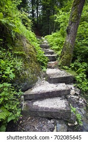 Stairs in the forest, Carinthia, Austria