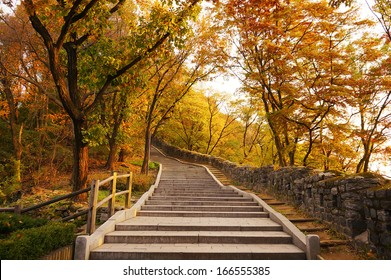 Stairs going uphill during autumn