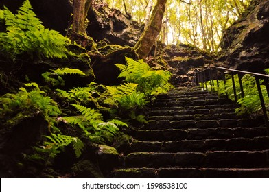Stairs leading up from the cave Gruta das Torres on Pico, Azores, Portugal