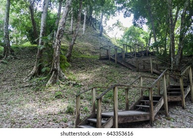Stairs leading the the ruins covered by thick jungle at the archaeological site Yaxha, Guatemala
