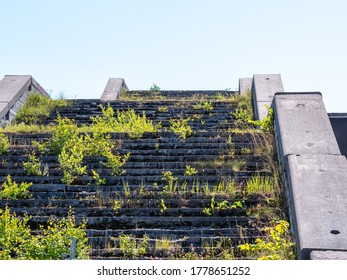 The stairs on the old building are overgrown with grass