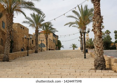 Stairs and palm trees on urban residential street in Israel