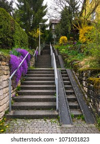 stairway in the city with beautiful flowers