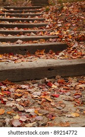 Stairway covered with colorful fallen leaves. Sarah P. Duke Gardens at Duke University in North Carolina.