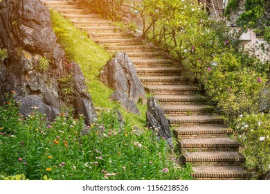 Stairway and Fence in the middle of garden, selective focus, artificial light, copy space
