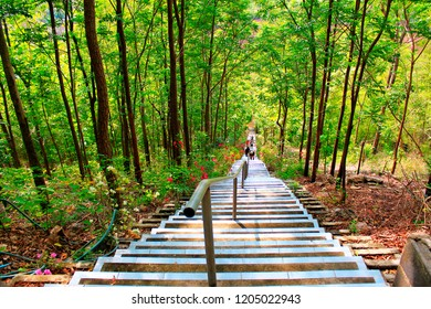 Stairway to heaven, lush green trees and a stairway to a Buddhist temple inside cave at Ban Huai Sakae, Phetchabun Thailand.