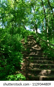 A stairway in the woods of Wisconsin leading upward to the top of a hill.