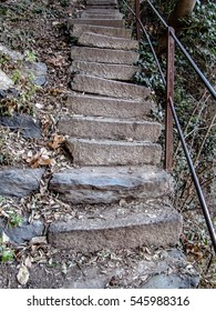 Stairways to Nature