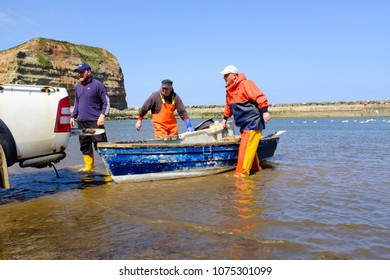 STAITHES, ENGLAND - APRIL 21: Staithes fishermen unloading catch of freshly caught lobsters. In Staithes, England. On 21st April 2018.