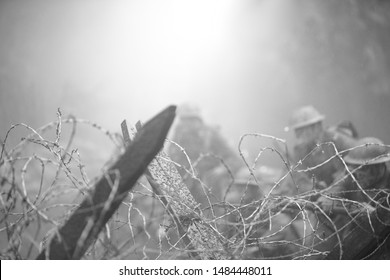 Stakes and Barbed Wire on Smoky Western Front