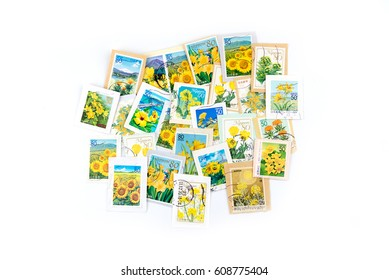 A stamp printed in Japan shows yellow flower collection.
