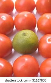stand alone green lime amongst the tomatoes