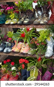 stand with flowers planted in shoes