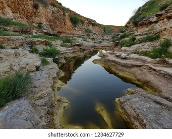 Stand still water in a pond in spring in northern Jordan. Near Yarmouk river. after a rainy day