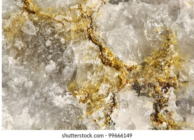 Standard auriferous quartz of sulfide ore from the deposit of Siberia with rich excretions of virgin gold