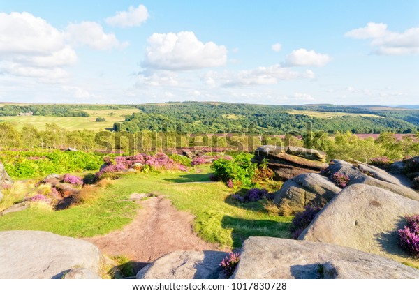 Standing amongst the gritstone outcrops and heather on a Derbyshire hill top looking out across the landscape.