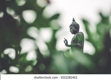 The standing buddha with green leaf foreground