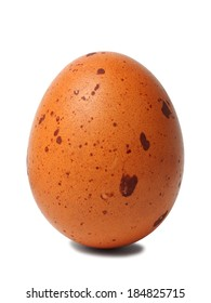 Standing dotted egg isolated on white background