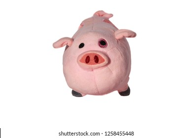 Standing in front pink pig on the white background