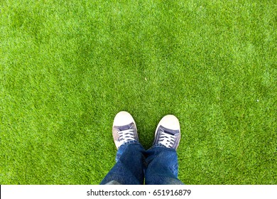 Standing on a green lawn