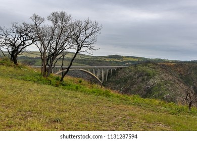 Standing on the mountain cliff with trees overlooking the bridge in a distance