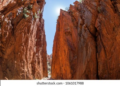 Standley Chasm - the jewel of the Arrernte/Central desert region, 50kms west of Alice Springs, surrounded by MacDonnell Ranges National Park.