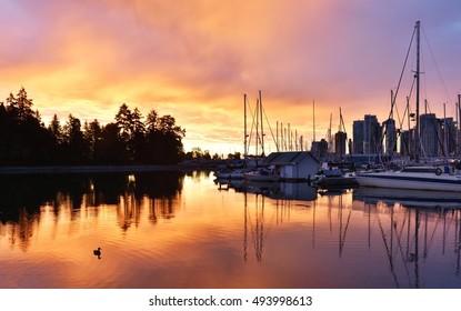 Stanley Park Seawall sunrise, Vancouver, BC