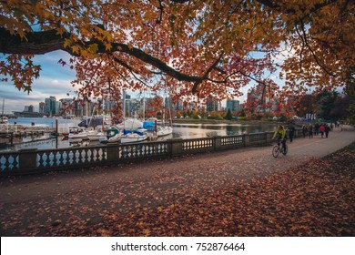 Stanley Park Vancouver Fall