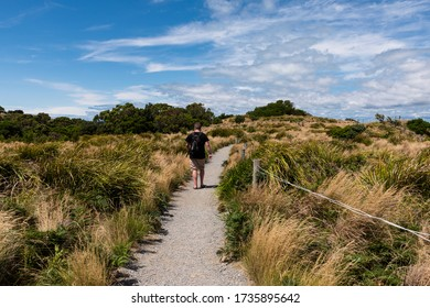 Stanley, Tasmania, Australia - February 10, 2020: A man hiking on top of the Nut in Stanley, Tasmania