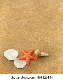 Star fish and shells on beach sand