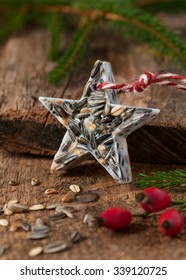 Star shaped wild bird food suet cake. Birdseed Christmas ornament.