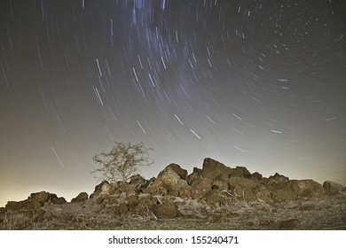 Star trails behind a dry thorn bush/tree on a round rock hill in a desert landscape.