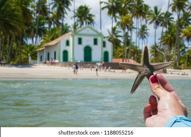 Starfish and the Carneiros Beach Chapel - Pernambuco - Brazil