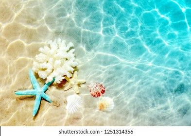 Starfish, coral and seashell on the summer beach in sea water. Summer background. Summer time