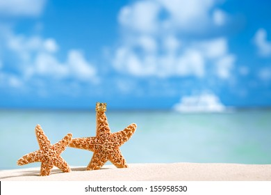 starfish in crown with ocean, beach,white boat  and seascape, shallow dof