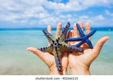 Starfish in girl hands
